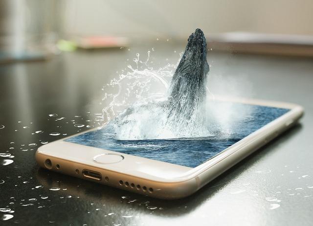 phone-2255117_1280.jpg